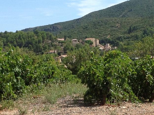 Vue du village sous les vignes